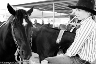 Horse minding